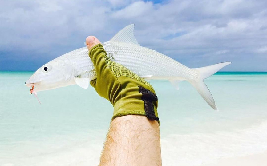 CC Bonefish_edited.jpg
