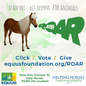 Help horses ROAR the loudest today thru Oct 10!