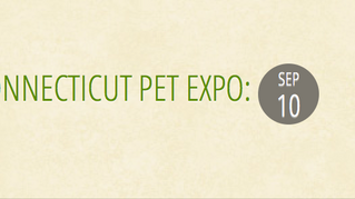 CT Pet Expo