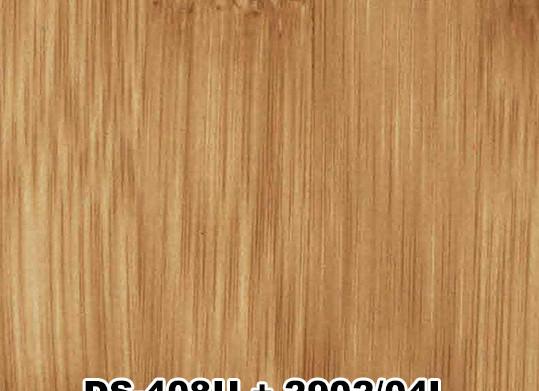 DS-408U+2902/04L
