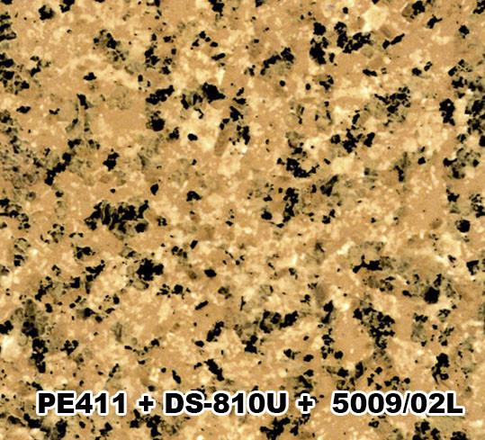 PE411+DS-810+5009/02L