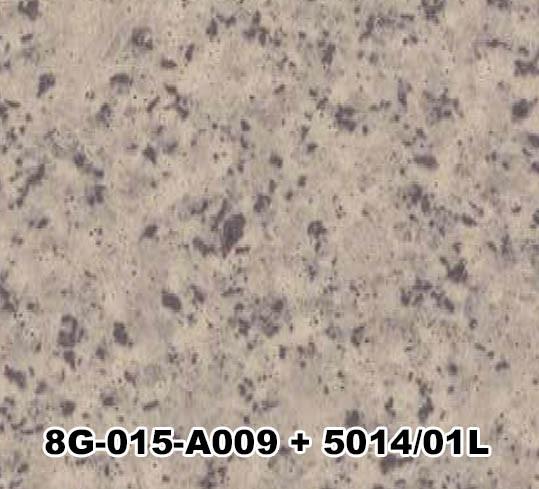 8G-015-A009+5014/01L