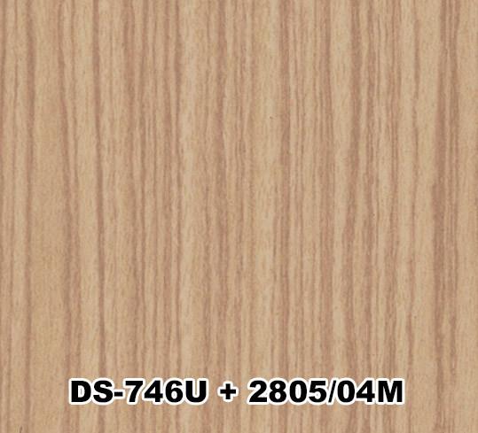 DS-746U+2805/04M