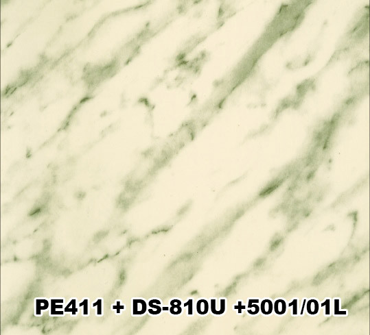 PE-411+DS-0810S+5001/01L