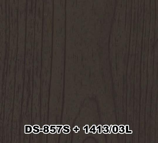 DS-857S+1413/03L