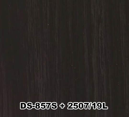 DS-857S+2507/19L