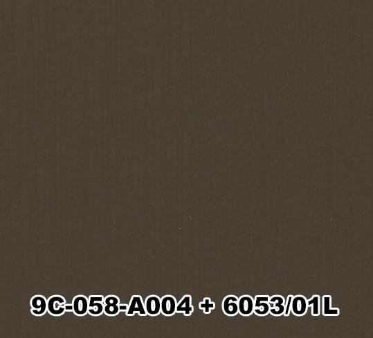 9C-058-A004+6053/01L