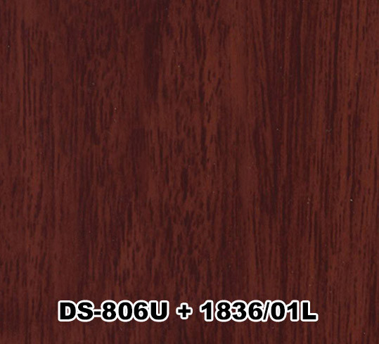 DS-806U+1836/01L