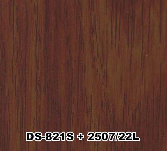 DS-821S+2507/22L