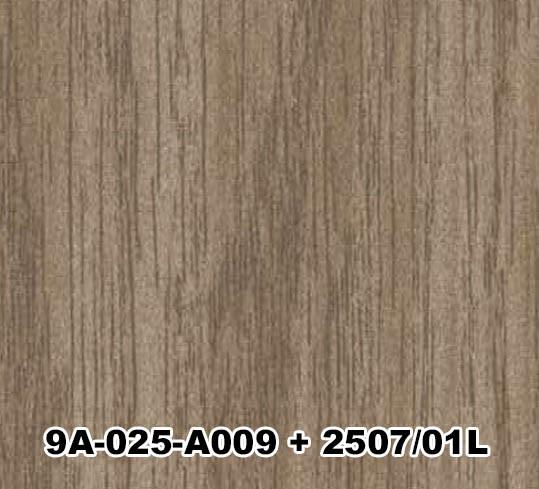 9A-025-A009+2507/01L
