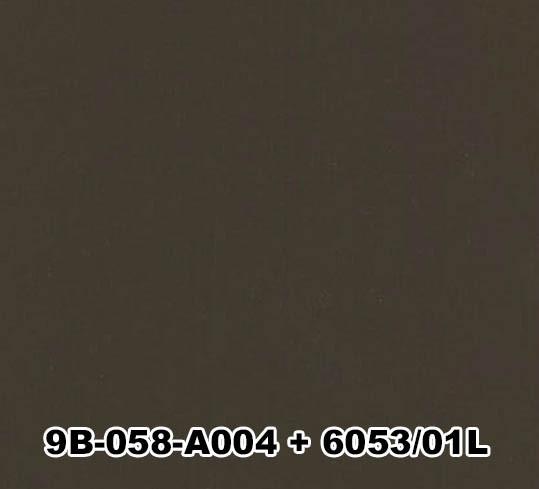 9B-058-A004+6053/01L