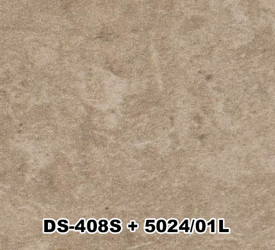 DS-408S+5024/01L