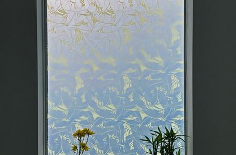 Window Photo 1.jpg