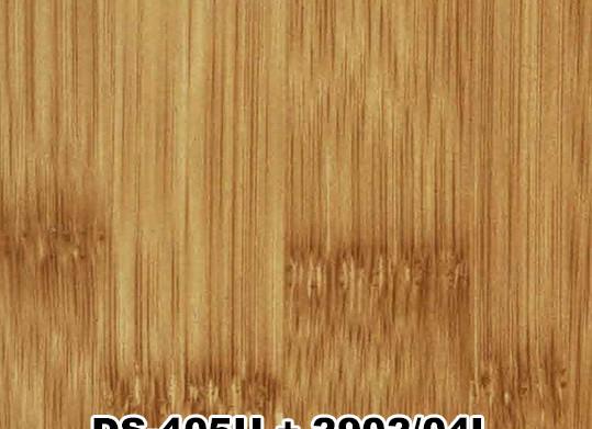 DS-405U+2902/04L