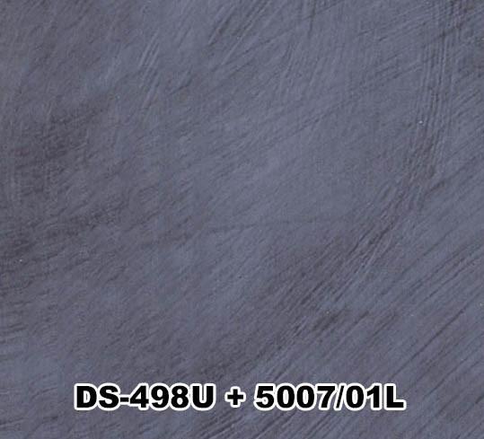 DS-498U+5007/01L