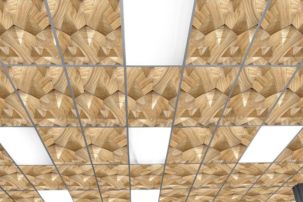 Drop Ceiling 1 rev2.jpg