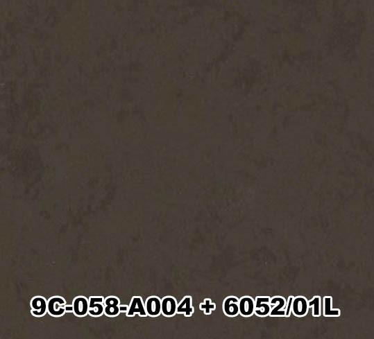 9C-058-A004+6052/01L