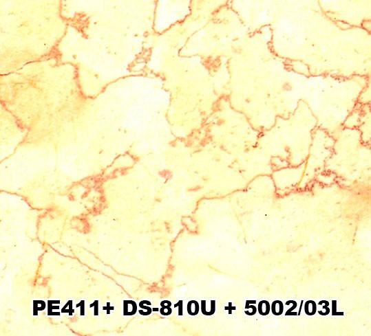 PE411+DS-810U+5002/03L