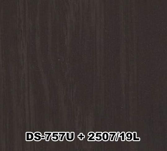 DS-757U+2507/19L