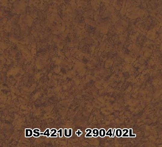 DS-421U+2904/02L