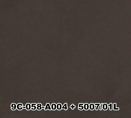 9C-058-A004+5007/01L