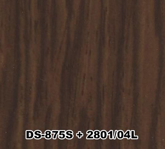 DS-875S+2801/04L