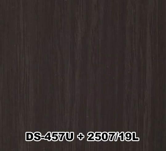 DS-457U+2507/19L