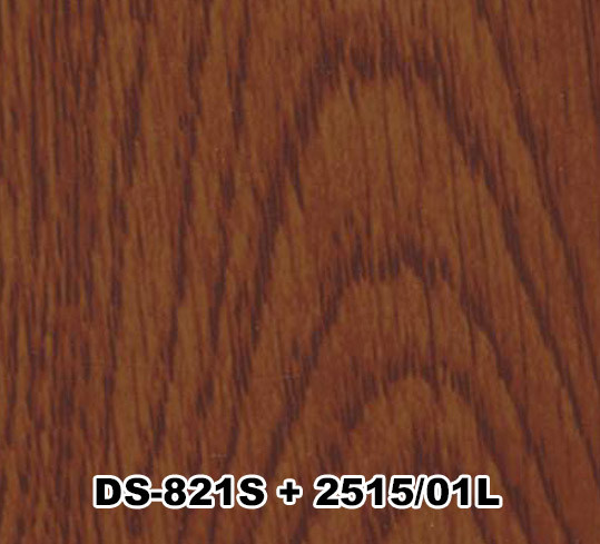 DS-821S+2515/01L
