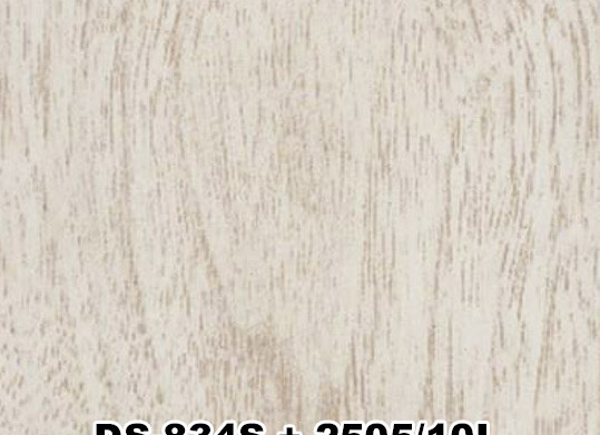 DS-834S+2505/10L