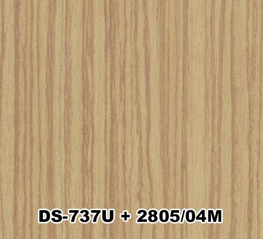 DS-737U+2805/04M