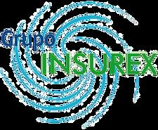 Grupo Insurex.png