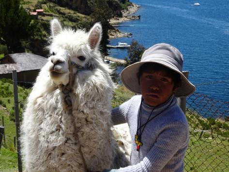 La Paz et la Coca, le légendaire Lac Titicaca et la mystique Isla del Sol