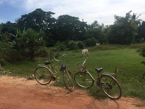 Siem Reap à vélo