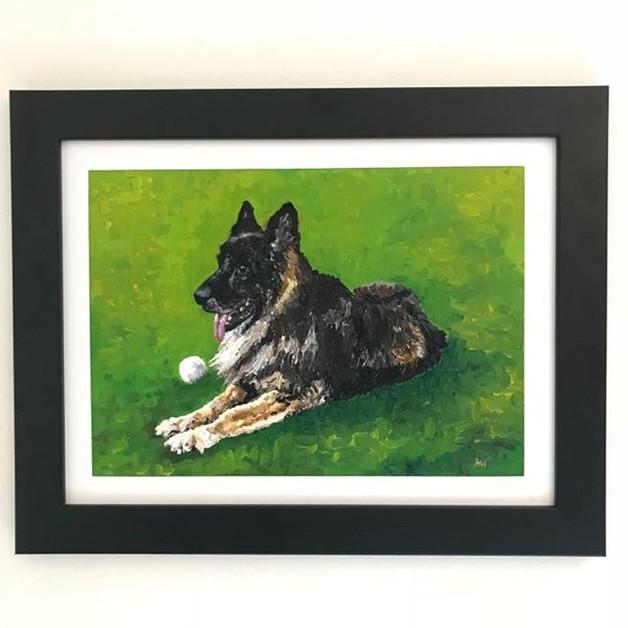 """German Shepherd. Oil on canvas board 12x14"""""""