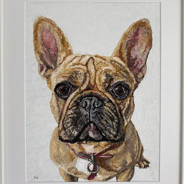 Nala. Oil on canvas board 30x40cm
