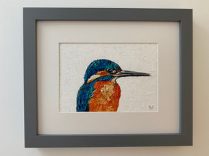 Kingfisher. Oil on canvas board 5x7""