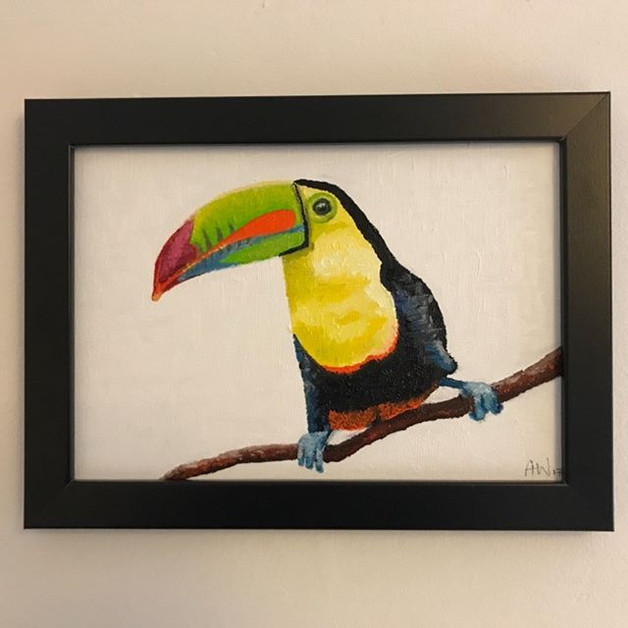 "Toucan - oil on canvas board 10x7"""