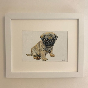 Pug puppy - oil on canvas board 5x7""