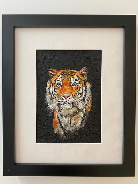 "Tiger. Oil on canvas board 5x7"""