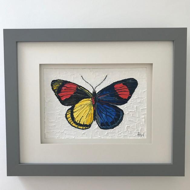 """Butterfly. Oil on canvas board 5x7"""""""