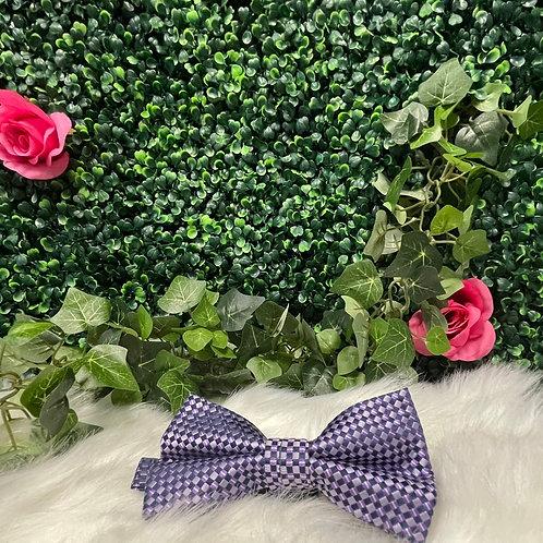 Men Purple Bow Tie