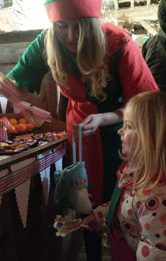 Visit Santa & his Elves