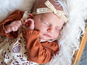 Annie's Newborn Session HIGHLIGHTS