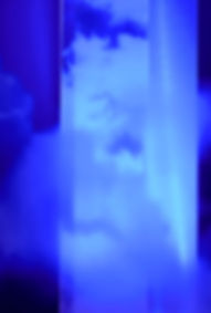 madisonperfumery_2018-10_0010.jpg