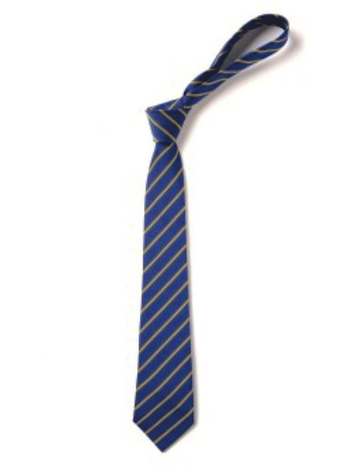 Royal and Gold Thin Striped Tie