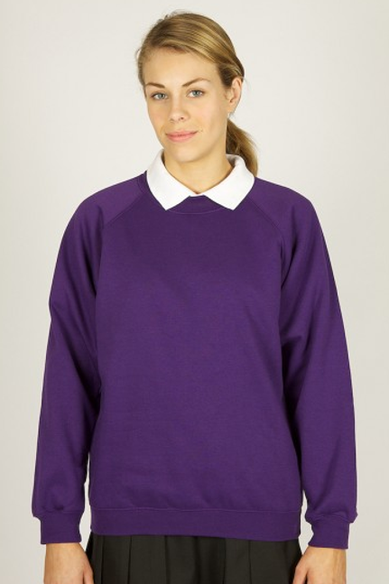 Purple Sweatshirt with Mount Primary Logo