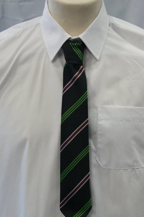 Calday School Tie (in House Colours)
