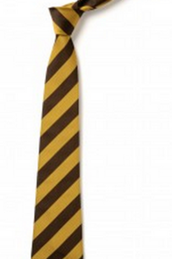 Gold and Brown Striped Tie (No.16.5)