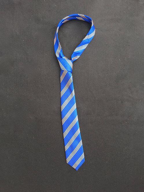 Wirral Grammar School Tie (in House Colours)