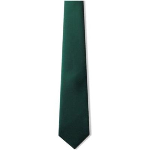 (Year 11) Green Tie for Boys